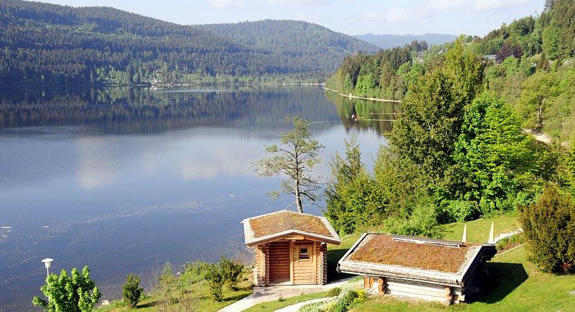 Willkommen im Schwarzwald