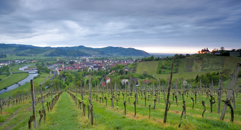 Mittlerer Schwarzwald - Kinzigtal